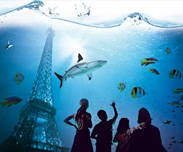 aquarium Paris Related Keywords & Suggestions - Laquarium Paris ...