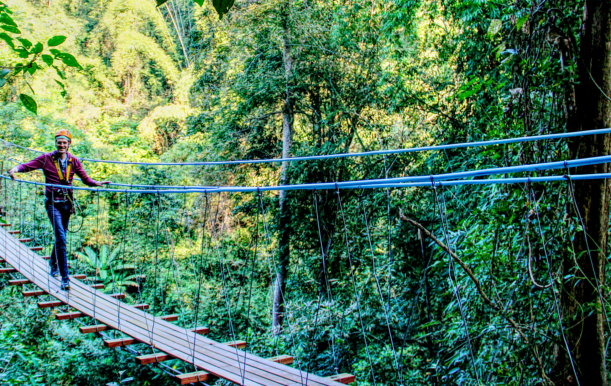 Zipline à travers la jungle thailandaise